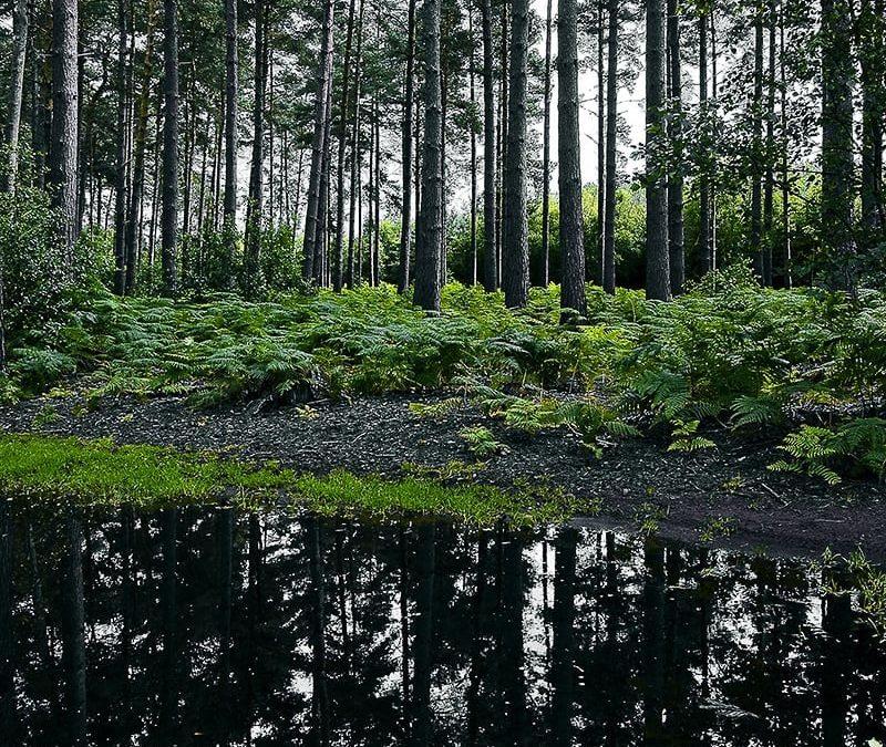 Landscape-Places-_DSC0014